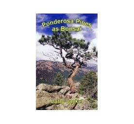 Ponderosa Pines as Bonsai